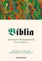BIBLIA - ANTIGO TESTAMENTO - OS LIVROS PROFETICOS