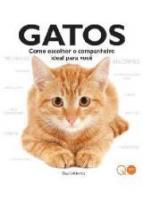 GATOS - COMO ESCOLHER O COMPANHEIRO IDEAL PARA VOC