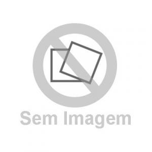 AMAR E SER LIVRE - AS BASES PARA UMA NOVA SOCIEDAD